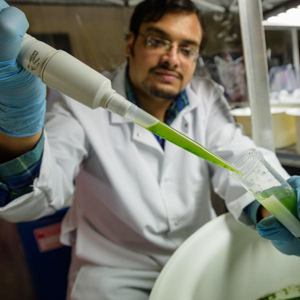 Student in a lab, transferring green liquid to a test tube